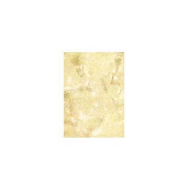 Pared de 20cm x 30cm de color marfil oscuro DECORTILE