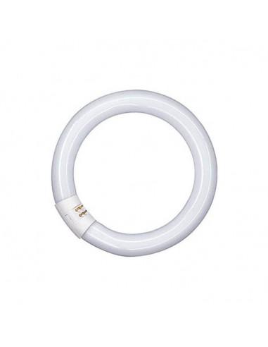 Tubo ahorrador circular de temperatura de 6400k y 32w t9